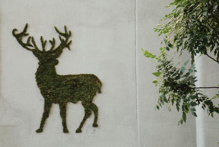Mohából graffiti - ceremóniamester ajánlja