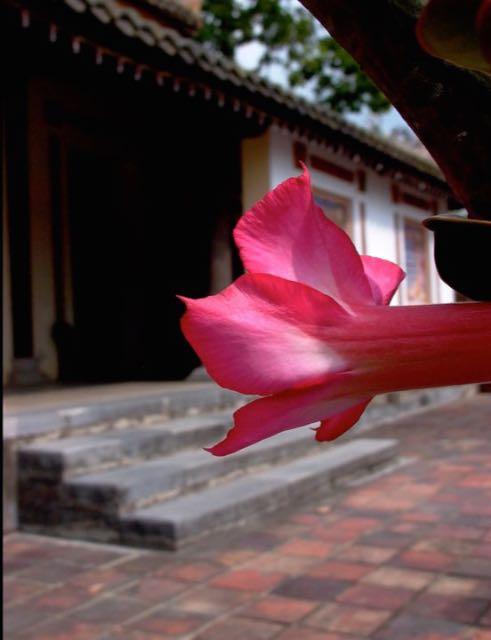 Utazz velem Vietnámba - képekben - ceremóniamester ajánlja