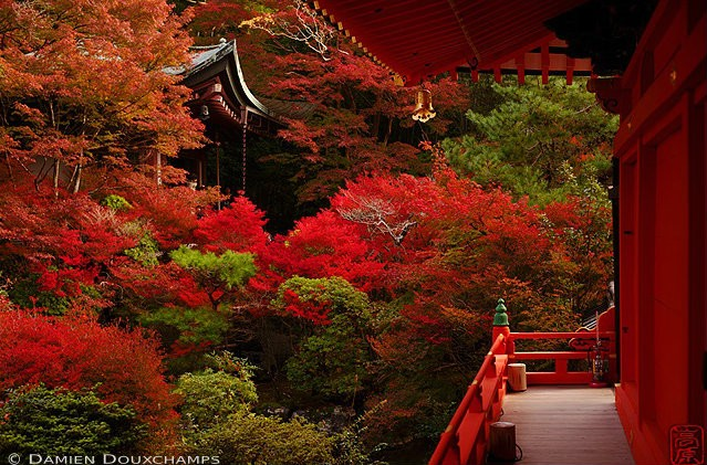 Best autumn colours around the world
