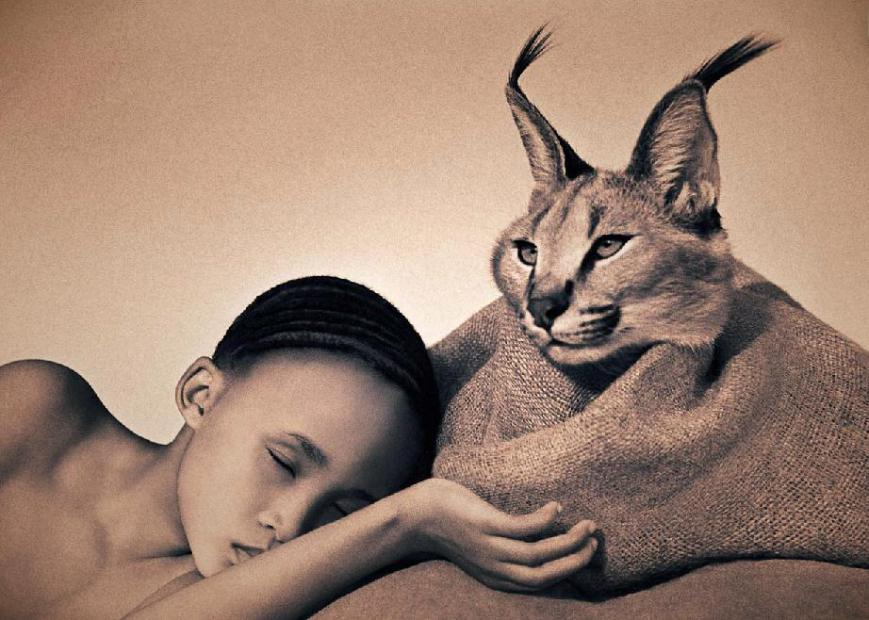 Ashes and Snow -  Gregory Colbert fimje -Ceremóniamester ajánlja