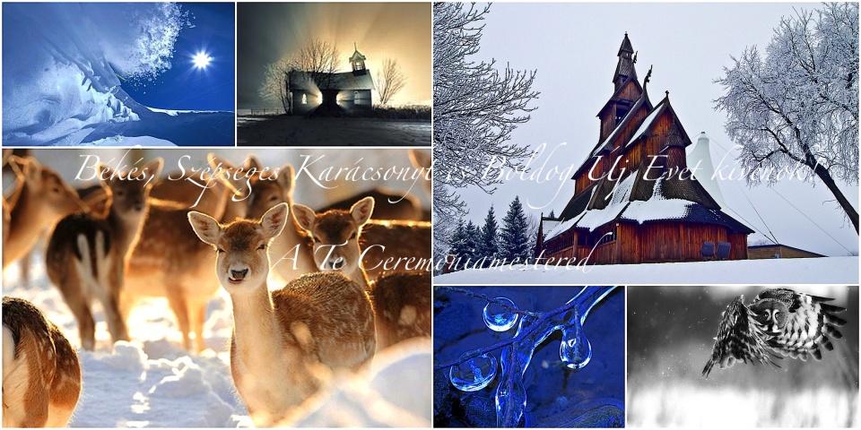 Kellemes Karácsonyt és Boldog Új évet kíván a Ceremóniamester (-ed)!