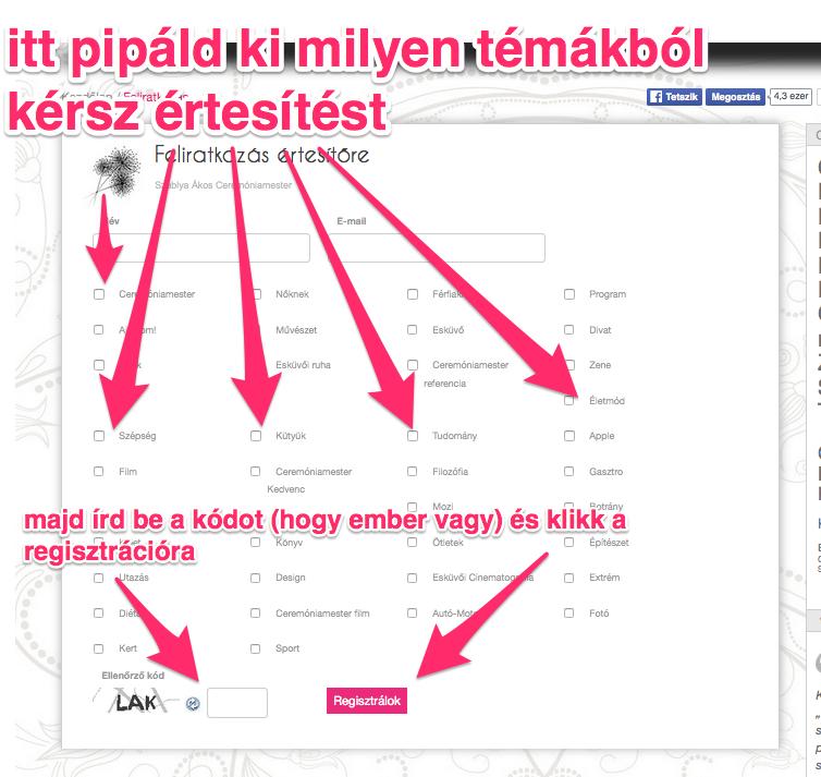 Hogyan használd a weboldalam - ceremóniamester ajánlja